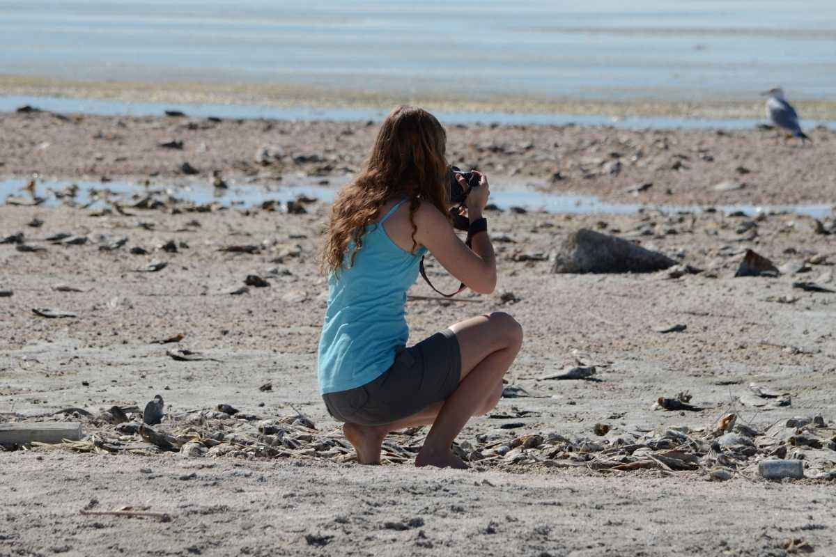 Taking Great Photos During Outdoor Activities