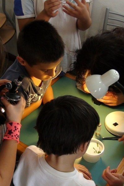 Can You Make A Microscope At Home?
