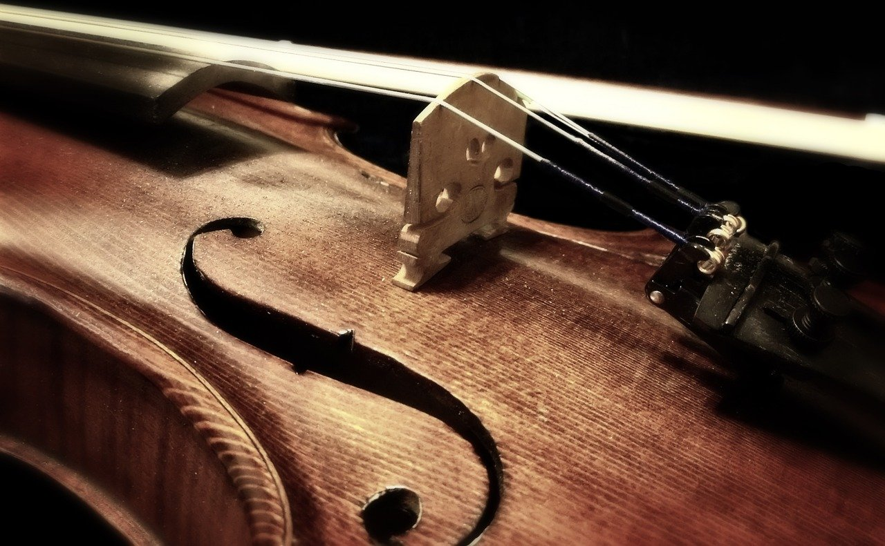 Violin Buying Tips For Beginners Any Novice Should Know