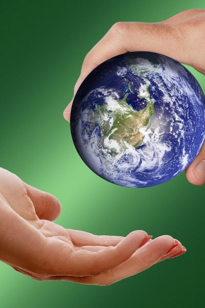 4 Smart Ways Your Business Can Contribute to Save Environment