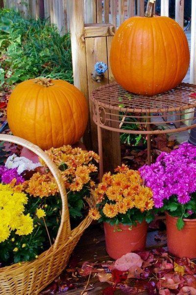 Fall Porch Decor Ideas with Pumpkins