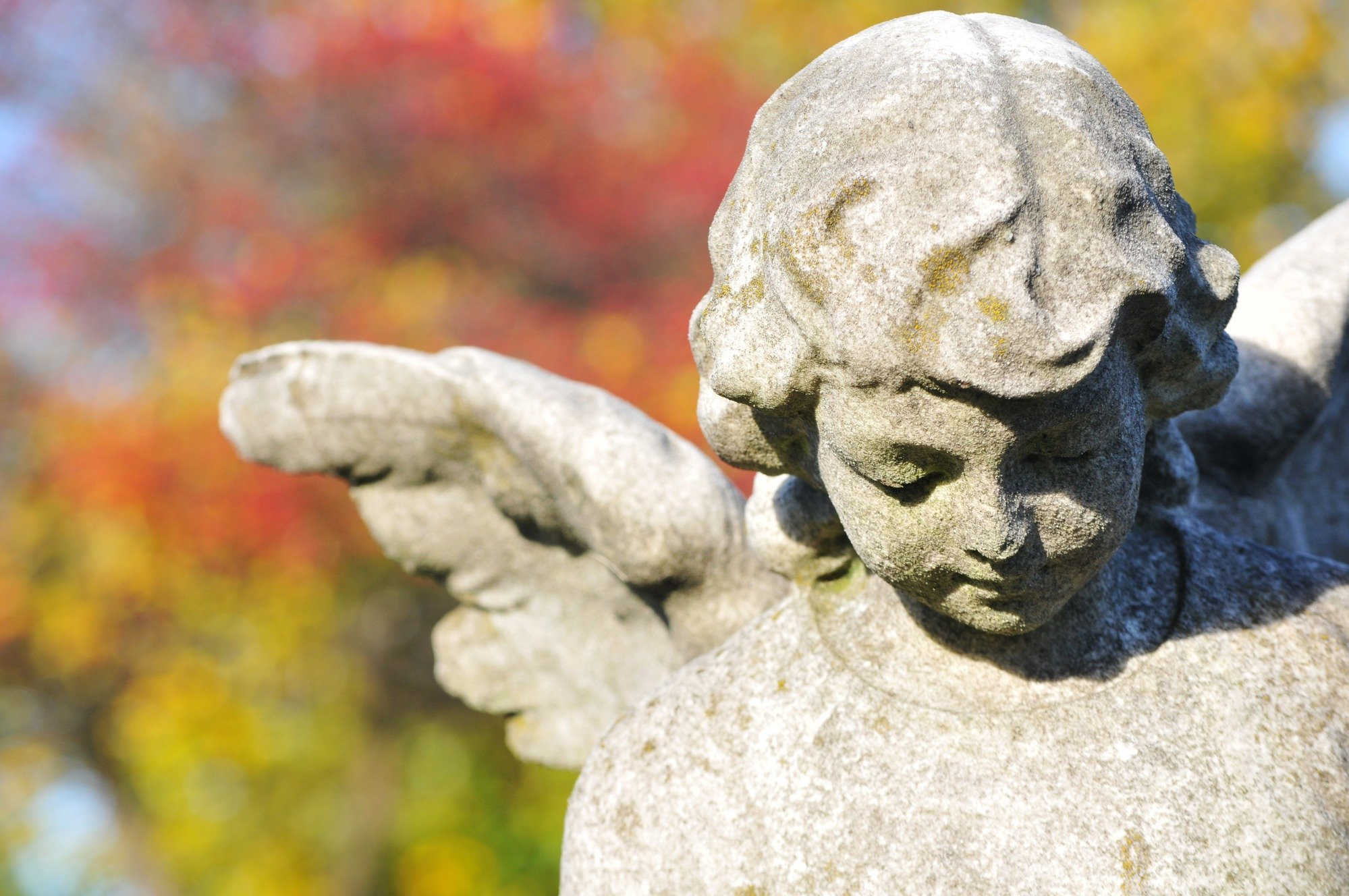 More Information About Funerals And What To Expect
