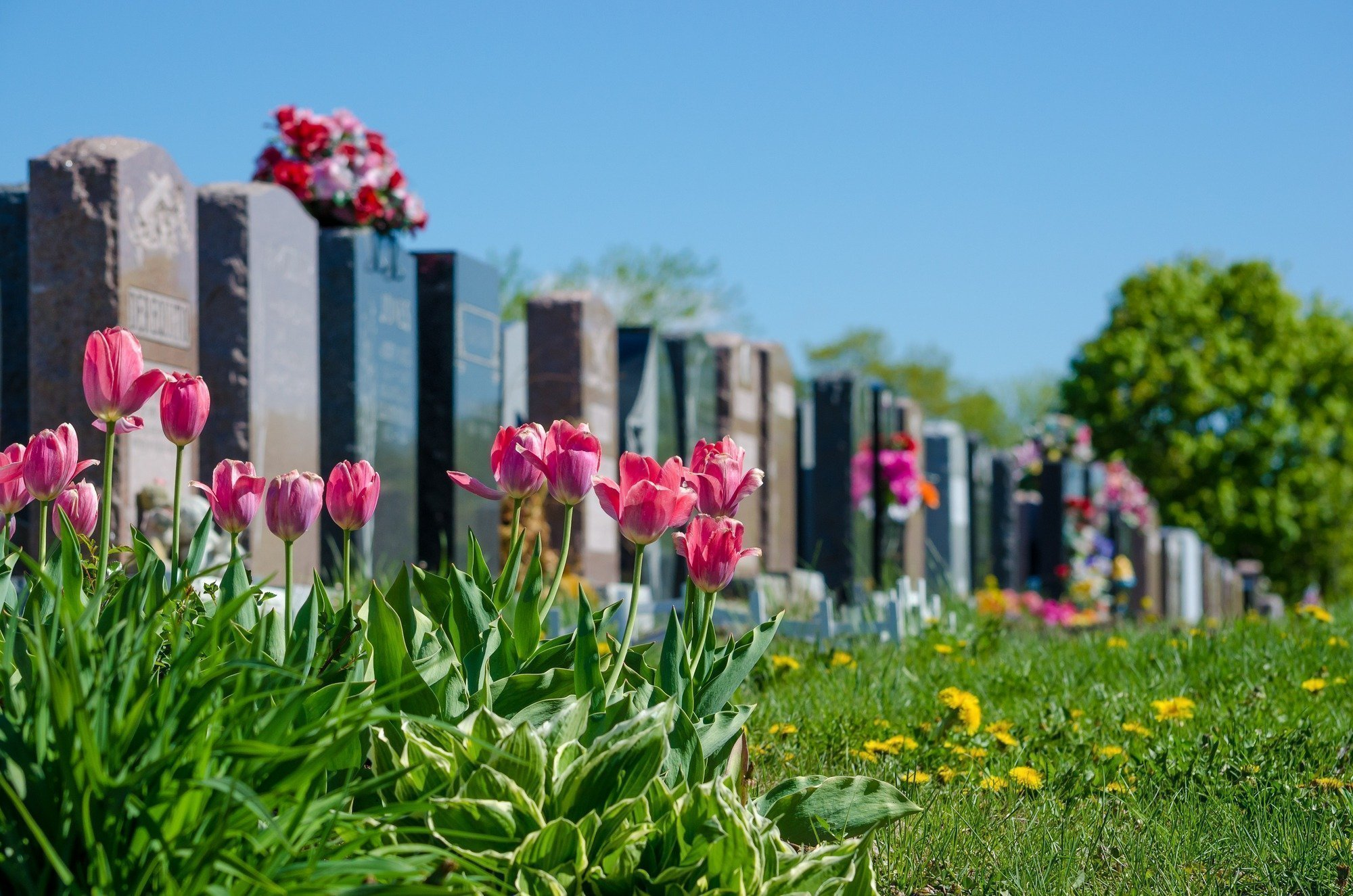 How Unpreparedness For Your Death Affects Your Family