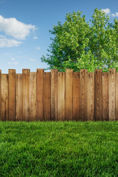 Why You Should Place A Fence For Your Backyard Garden