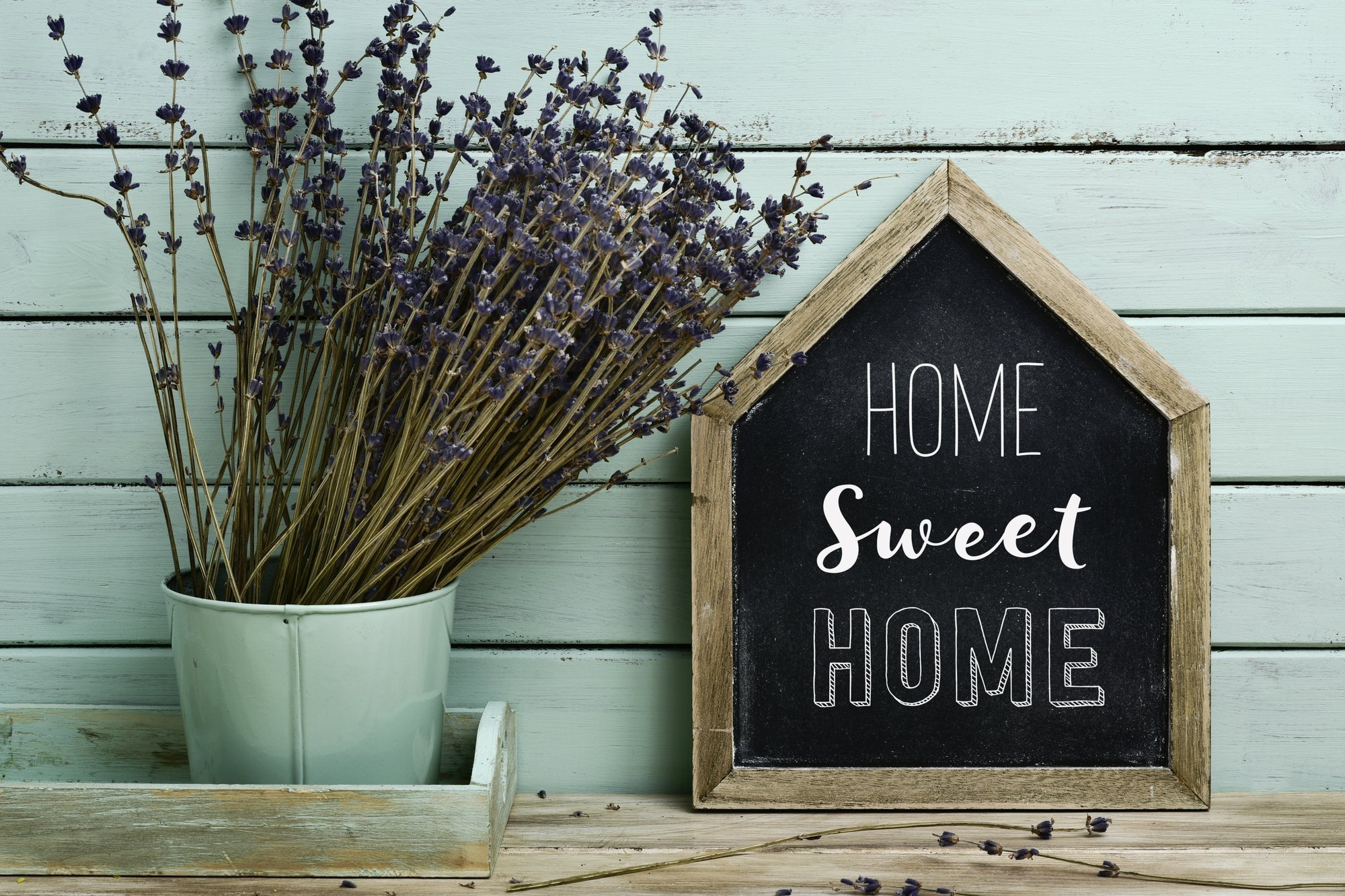 Going Green At Home The Simple Six Step Guide
