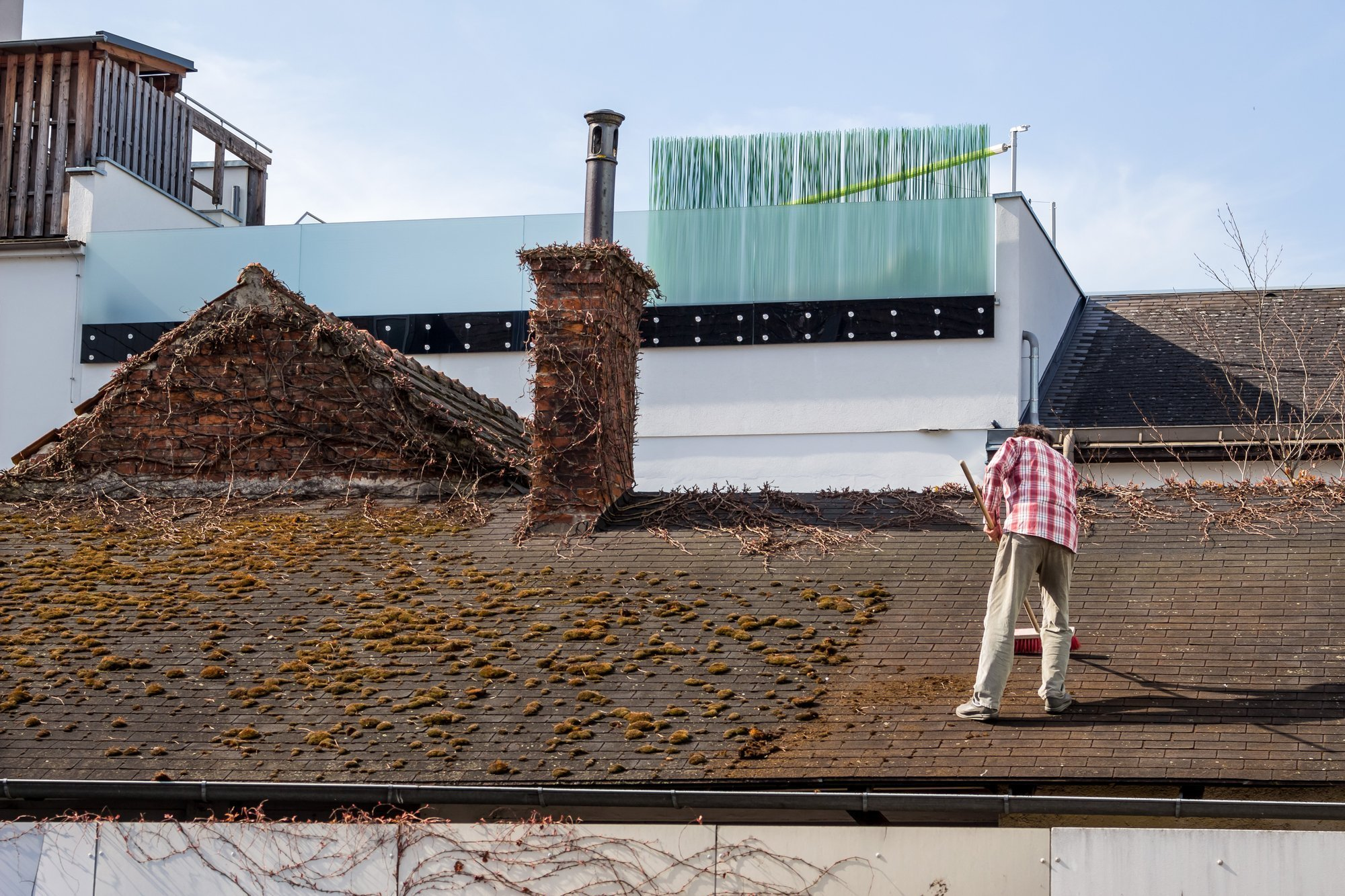 Tips on Tackling the Moss or Algae on Your Roof That You Need to Know