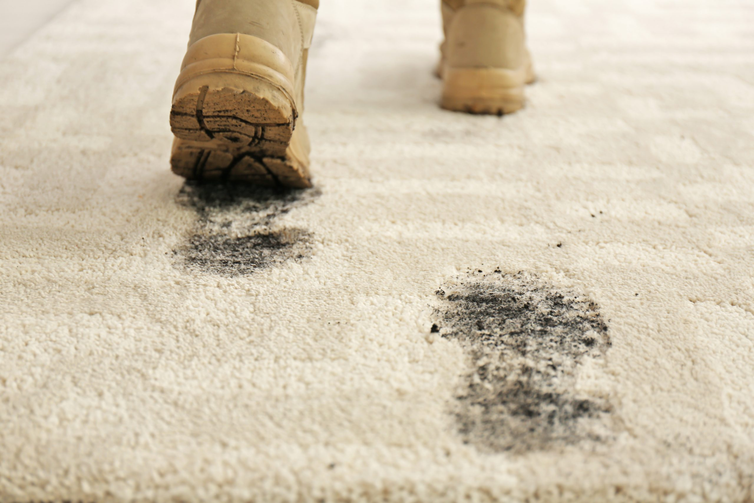 5 Signs Your Carpet Needs Cleaning