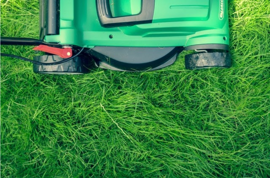 8 Things to Consider Before Hiring a Lawn Care Company