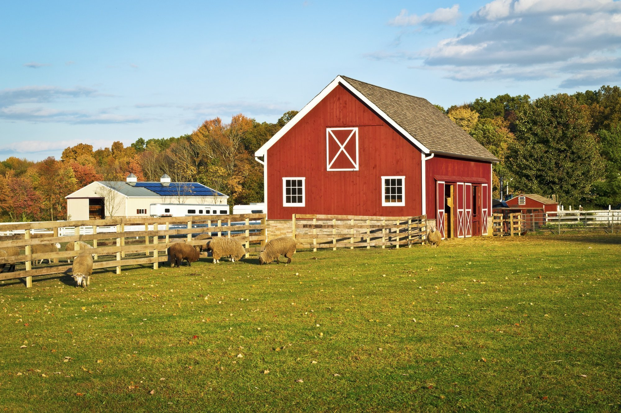 Beginner's Guide to Starting a Farm Business