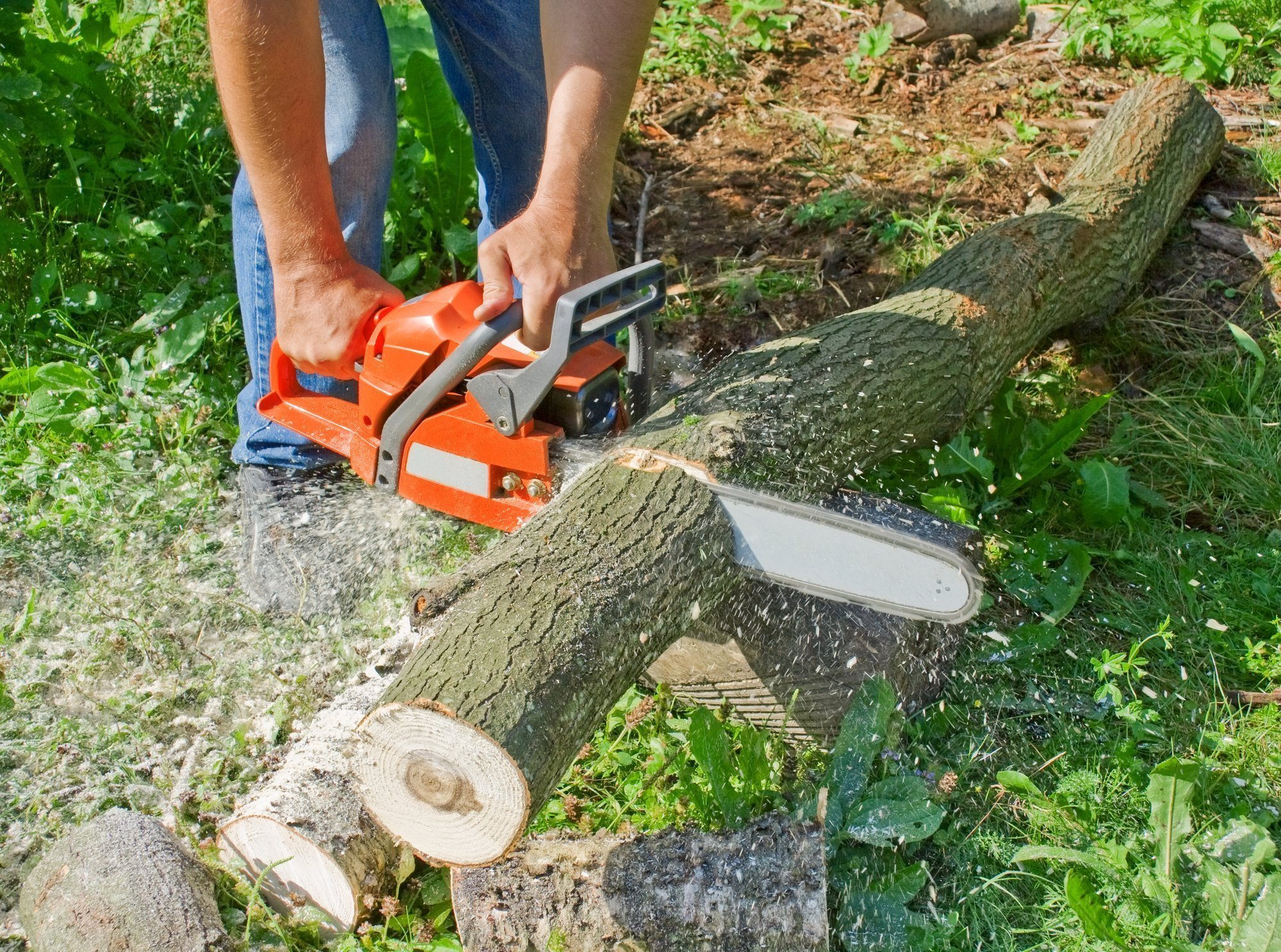 Echo Chainsaws - Why You Should Try This Brand of Power Tool