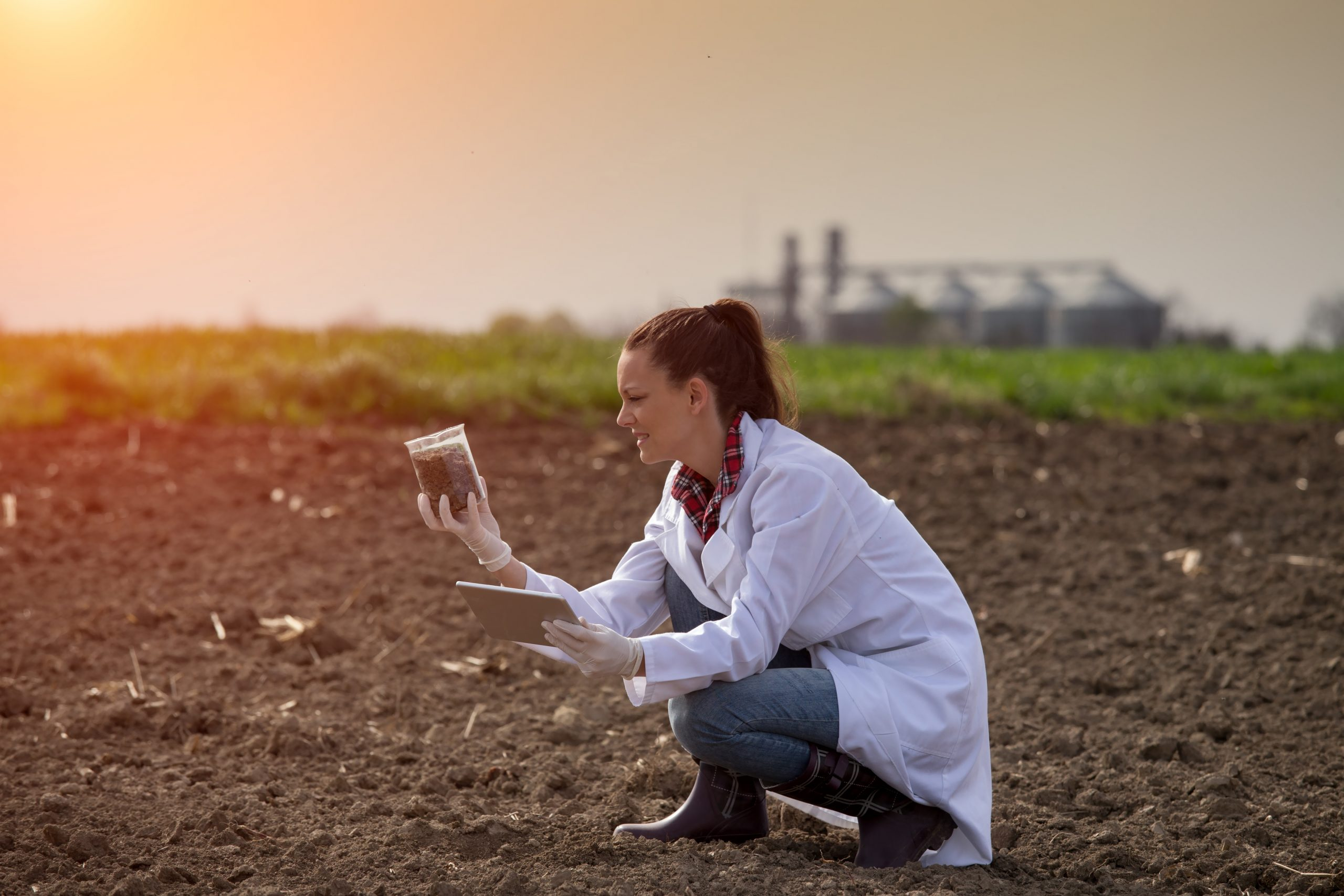 How Is Soil Testing Conducted And Why You Need It