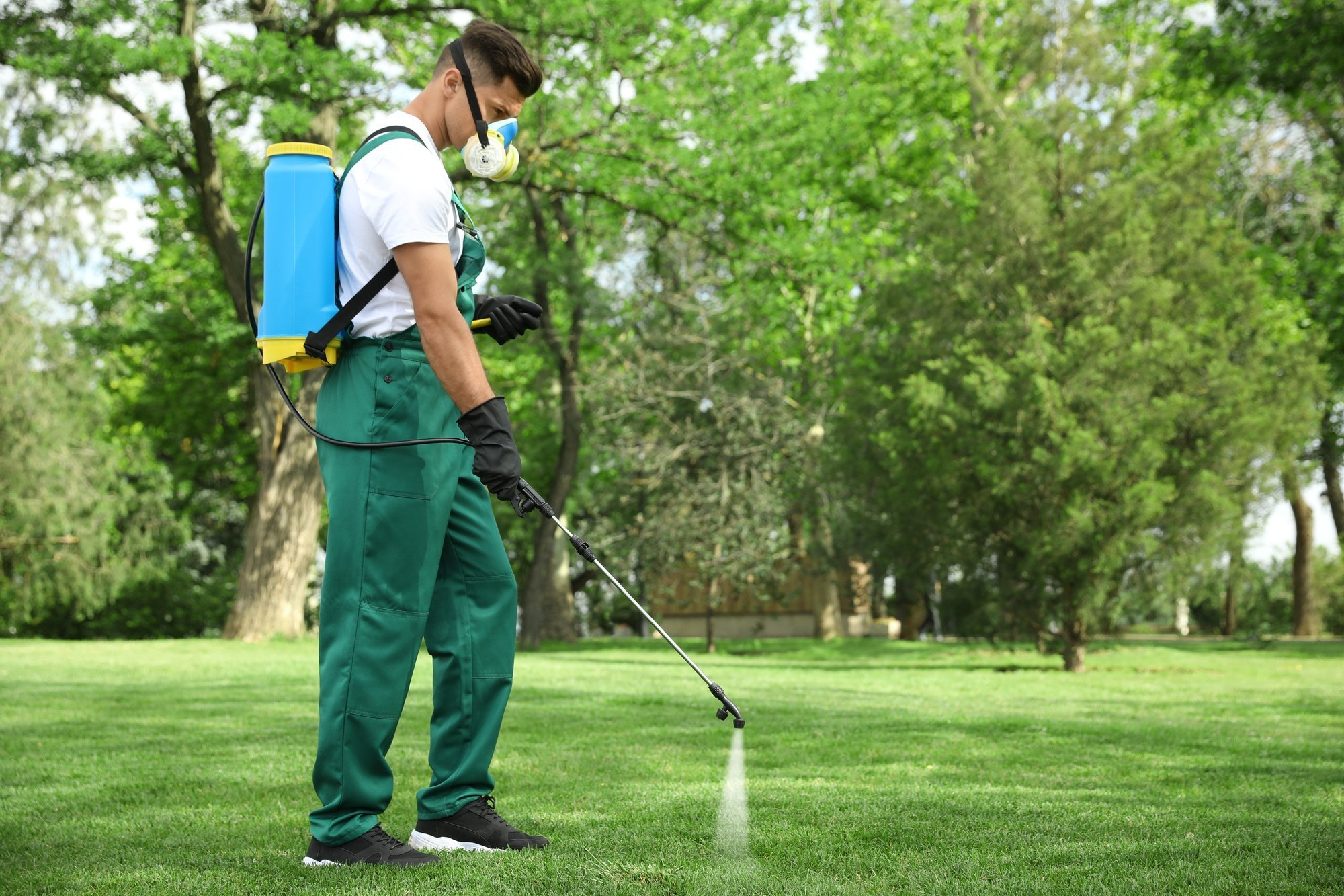 Keep Your Lawn Lush Green with the Professional Pest Control Service