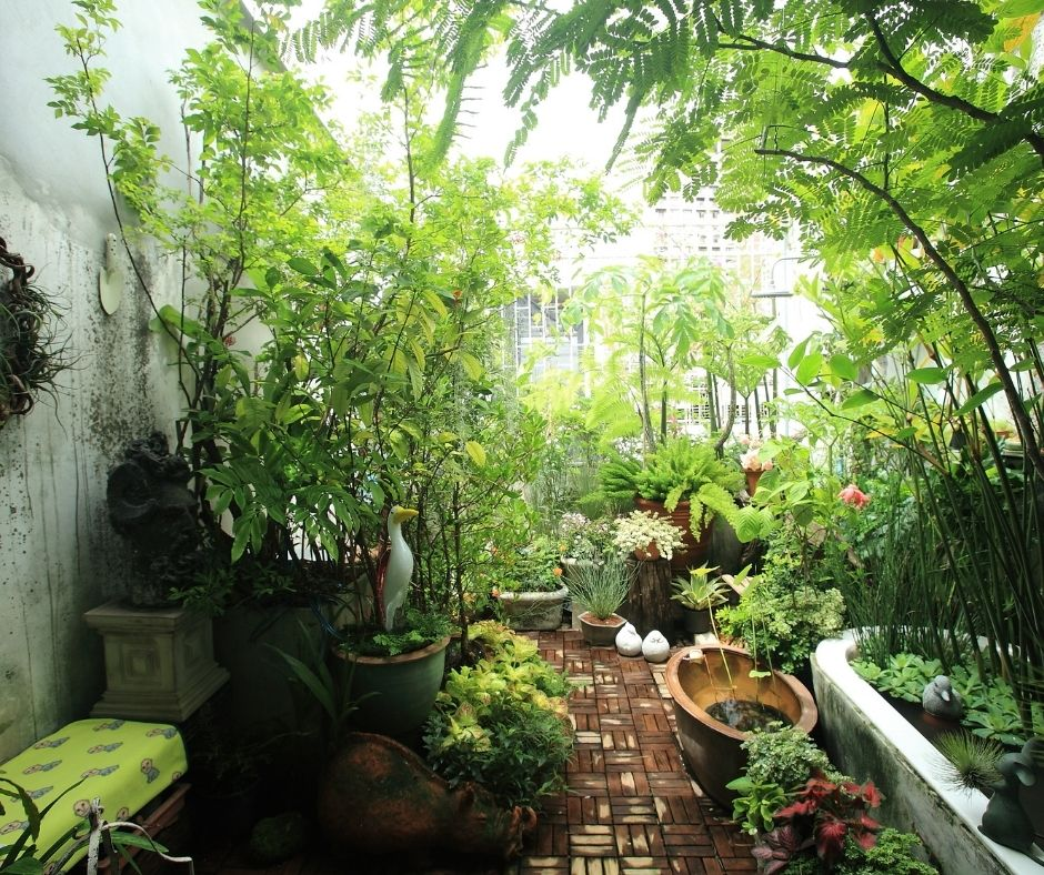 4 Tips To Have A Perfect Garden In A Small Space