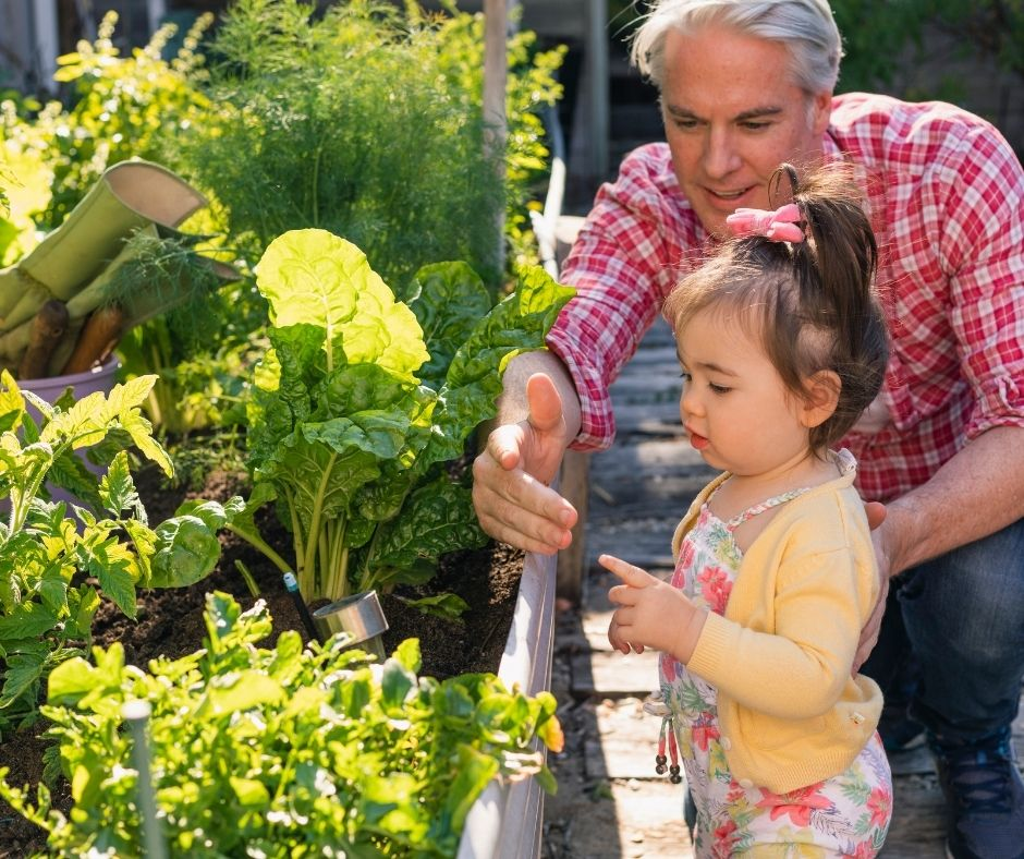 The Best Father's Day Gifts for Garden Lover Dads
