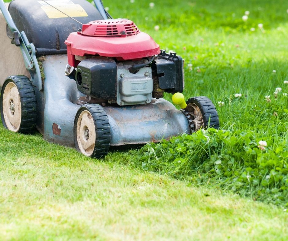 The Importance Of Mowing Your Lawn