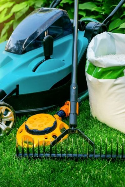 5+ Tips to Maintain a Healthy Lawn