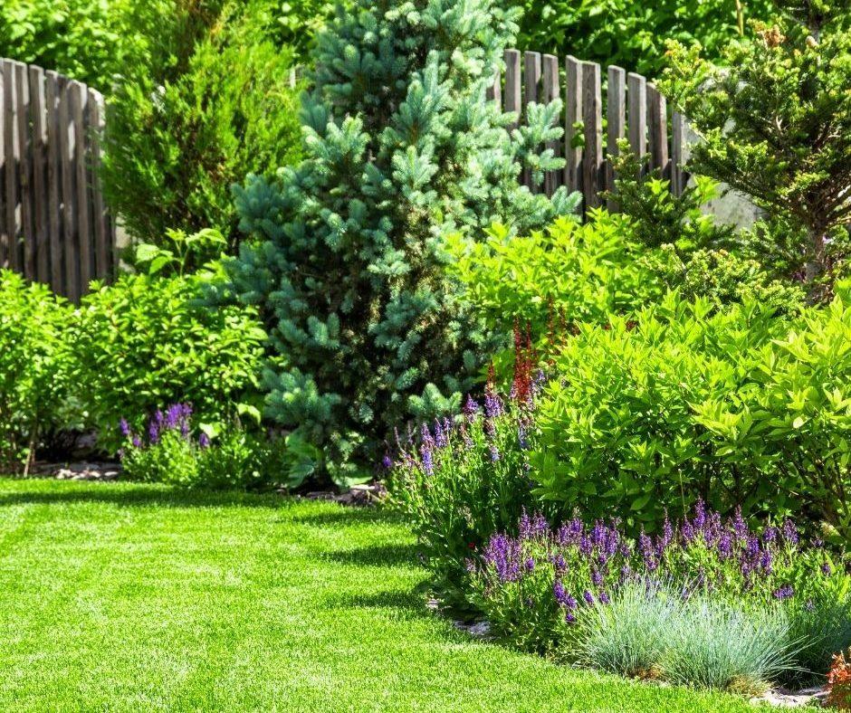 O Fallon Lawn Care Company Shares Landscape Ideas