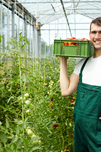 8 Farming Tips And Hacks: How To Work And Minimize Effort