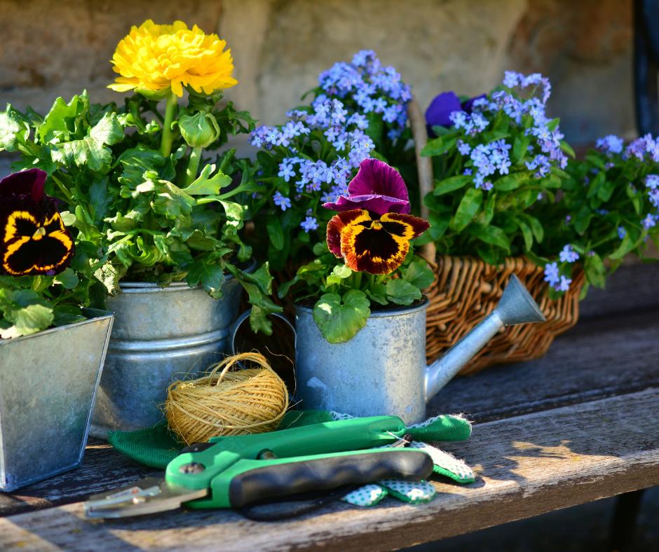 8 Ways to Transform Your Garden