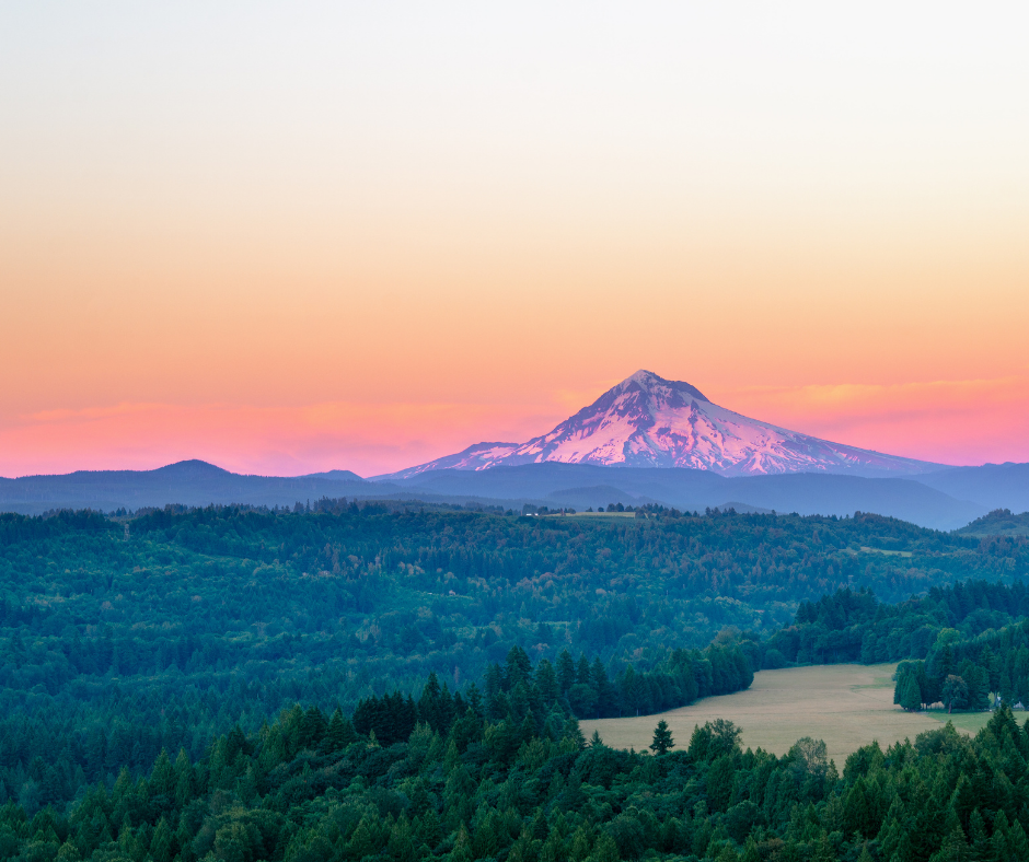Buying A House In Portland, Oregon? Here's Everything You Need To Know
