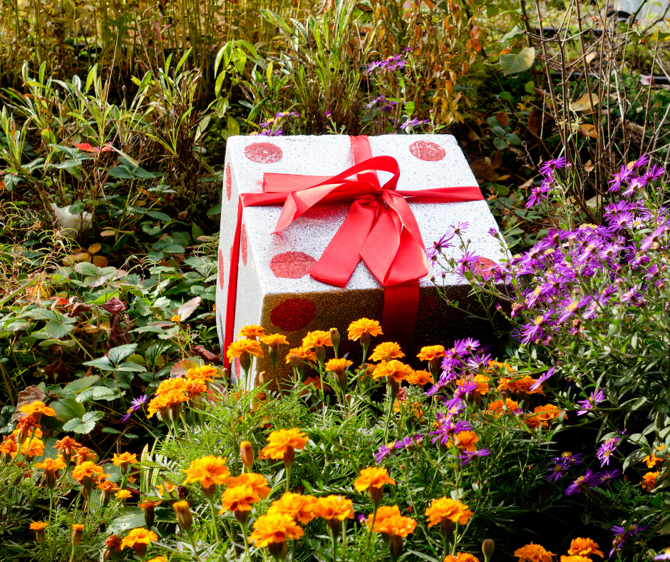 7 Gift Ideas for Gardening Enthusiasts