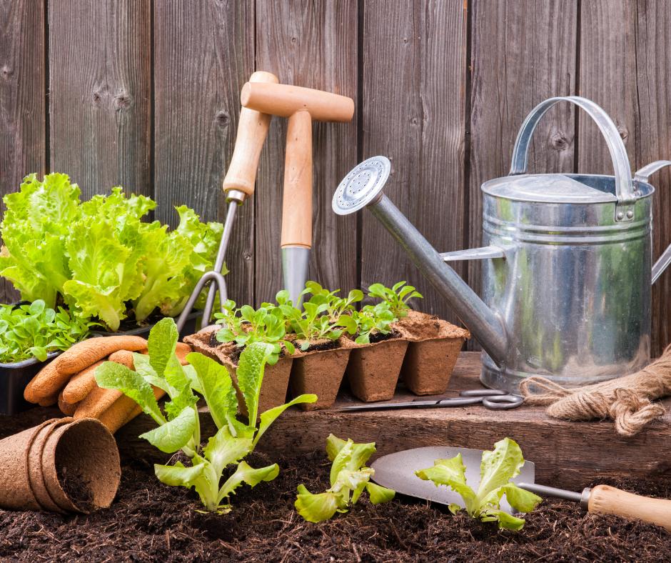 9 Top Tools for Keen Gardeners