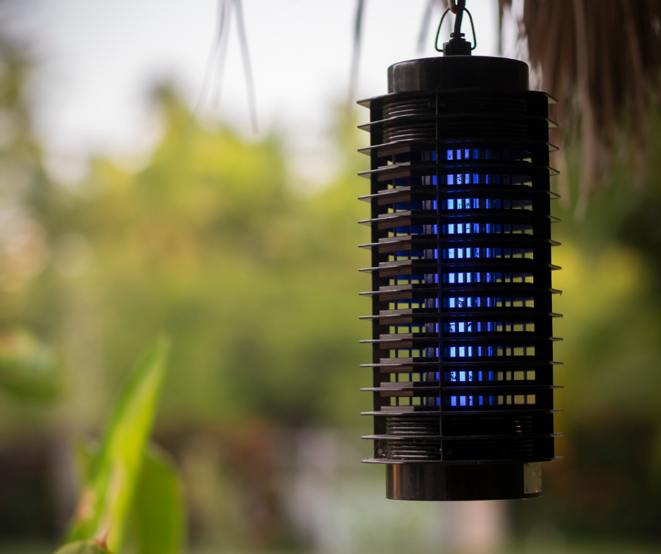 How Bug Zappers Use Ultraviolet Light to Kill Insects