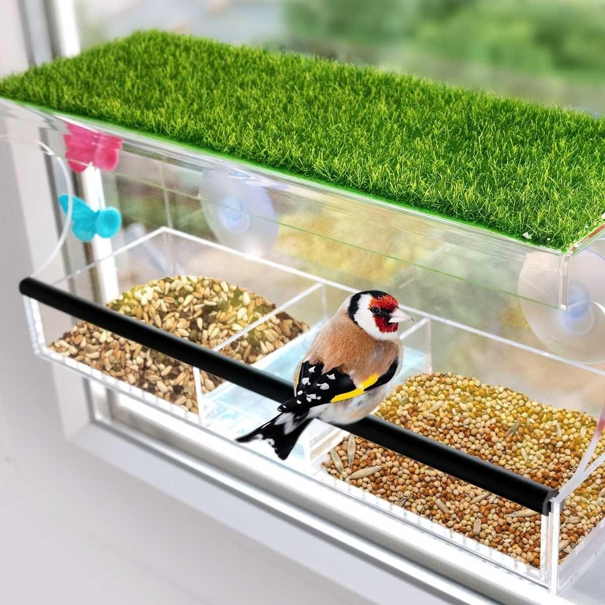 Varieties of Window Bird Feeders