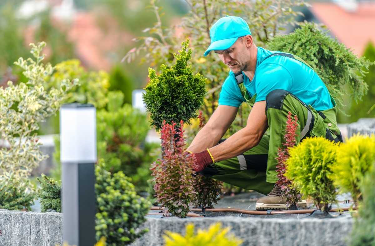 Tips to Hire a Reliable Gardener in Western Australia