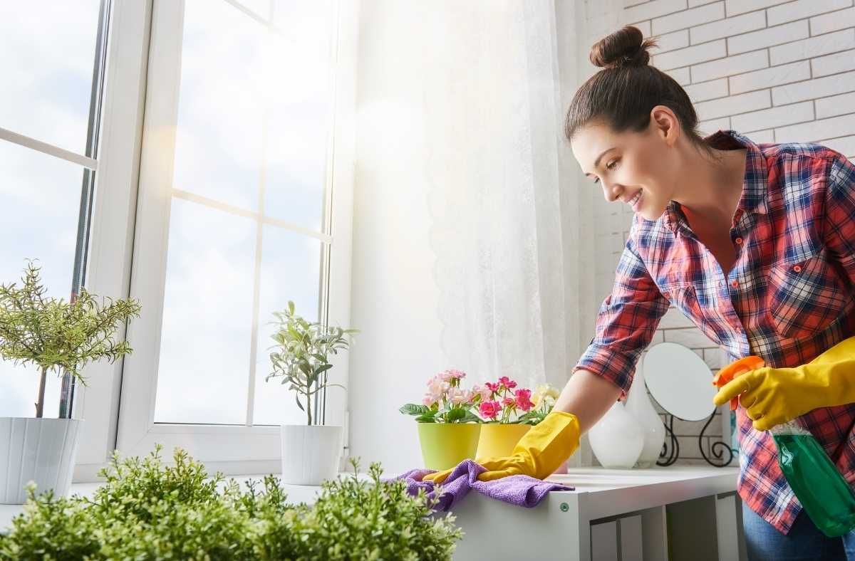 What is Organic House Cleaning
